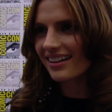 Stana Katic at Comic Con 2010 Exclusive!